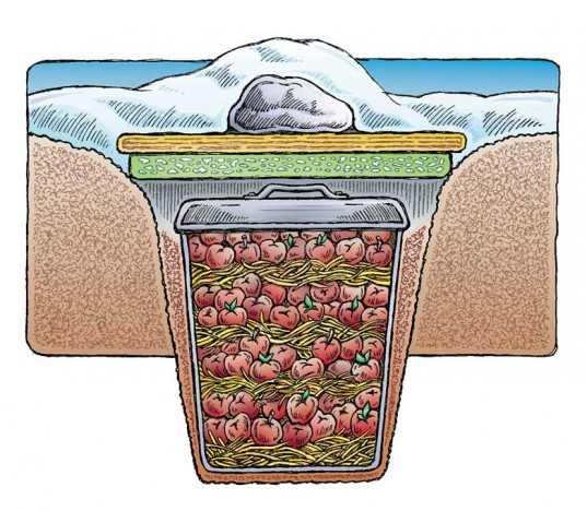 Forum on this topic: How to Build an Underground Root Cellar, how-to-build-an-underground-root-cellar/