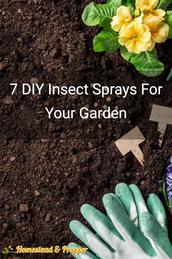 7 diy insect sprays for your garden homestead prepper for Where to buy cheap land for homesteading
