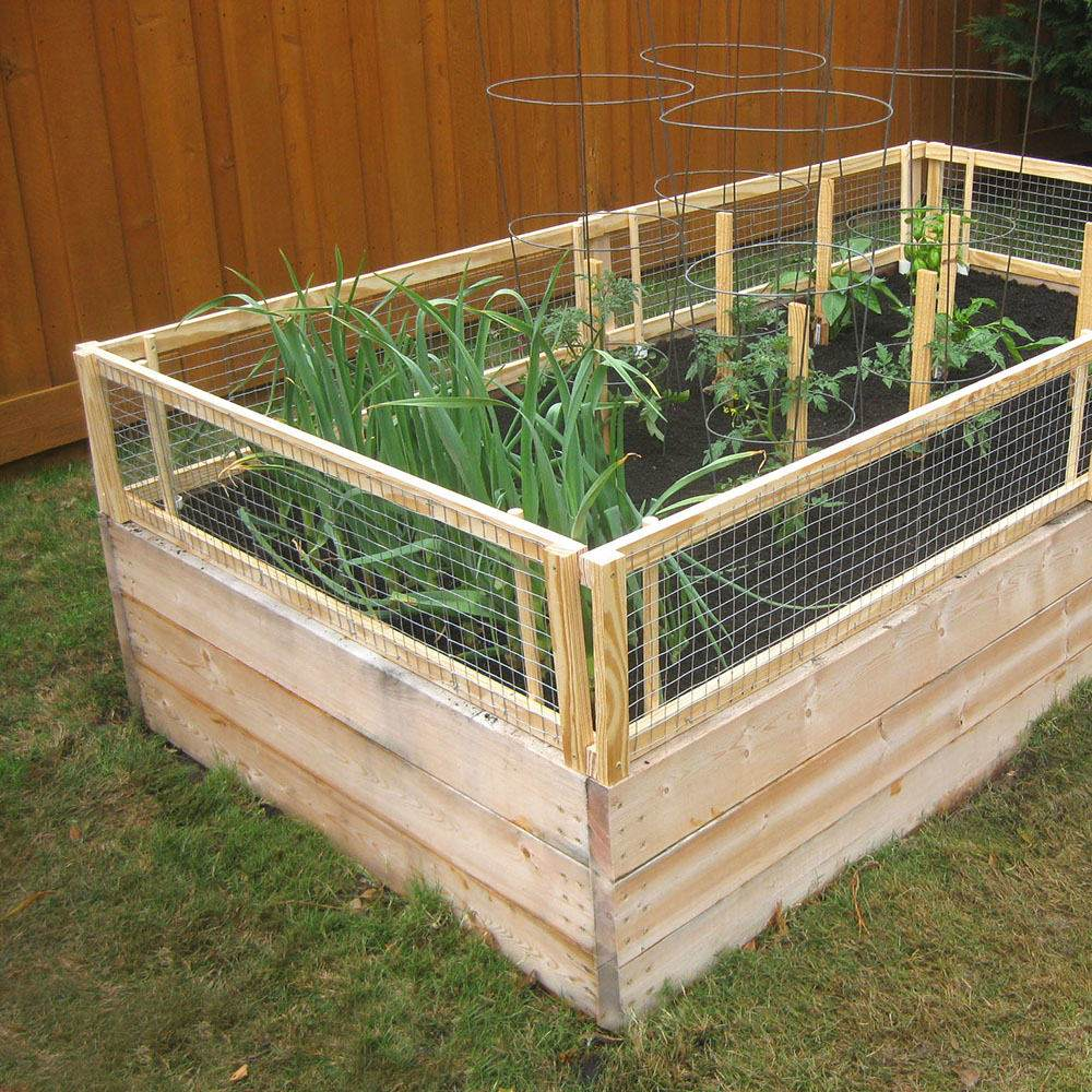 Garden Bed With Fence